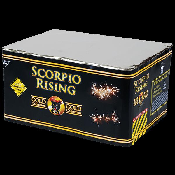 Scorpio Rising